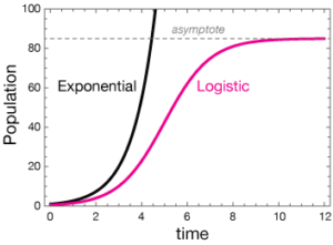 Logistic Growth Formula